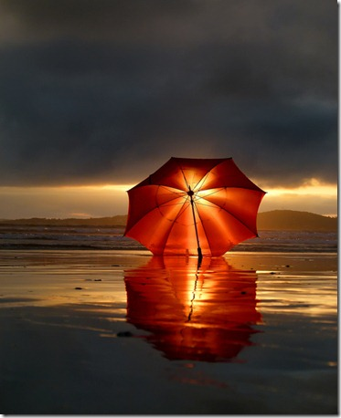 umbrella in storm
