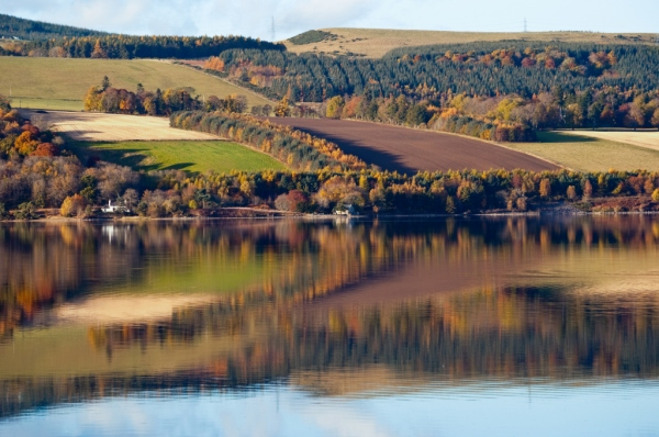 autumn, fall, farm land, farming, Cromarty, Scotland