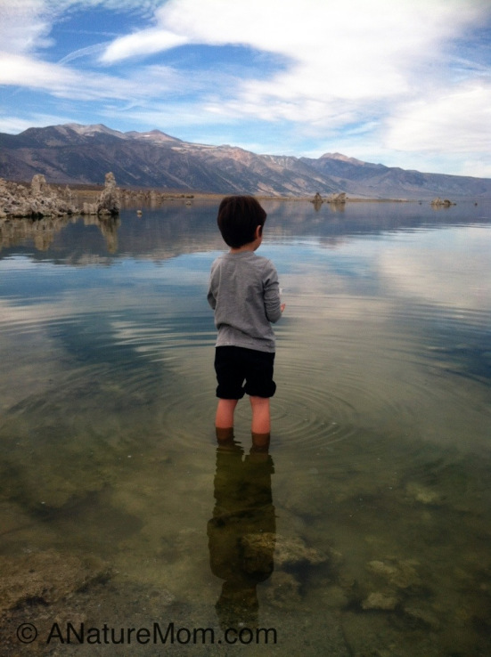 Linda's Son Standing in Mono Lake