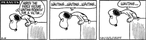 charlie brown, waiting, take action, do something, success