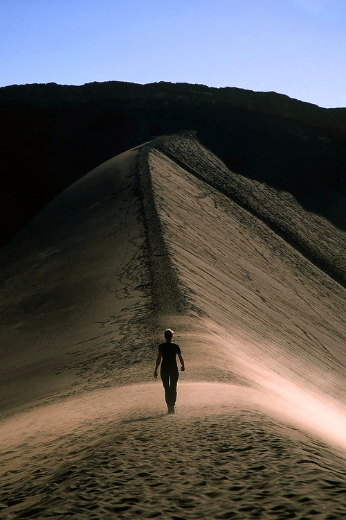 photograph,sand,dune,desert,path,solitude,