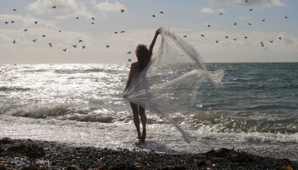 wind, beach, birds, ocean,