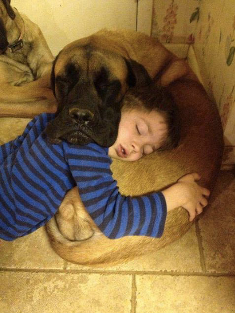 cute-dog-sleeping-with-boy