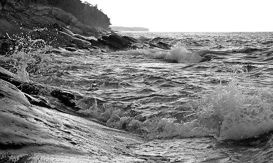 mayne island - Terrill Welch
