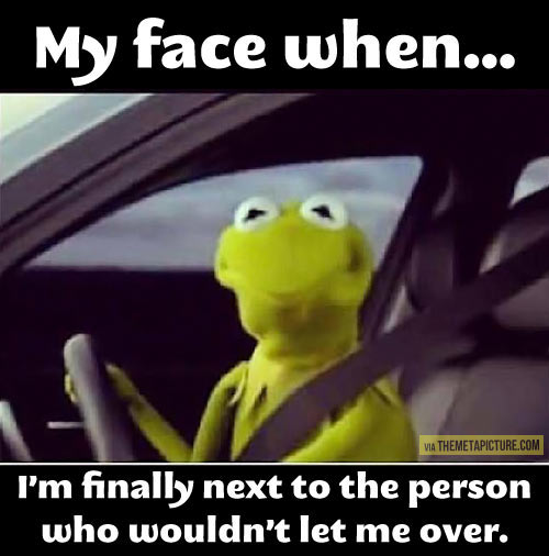 driving, kermit-the-frog,funny,laugh