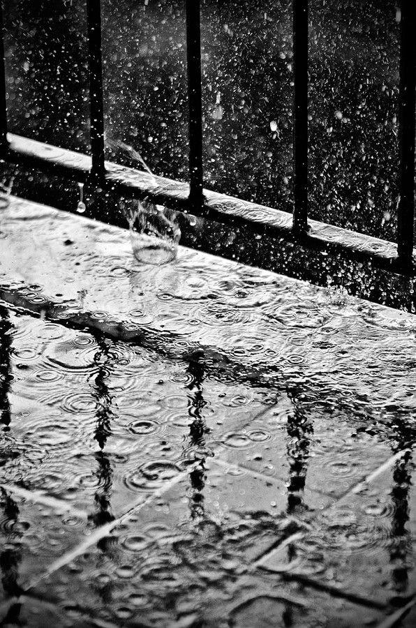 black and white, Christian Calzone