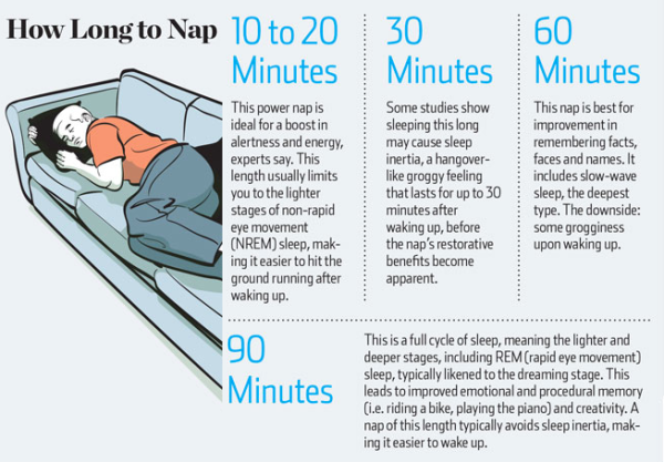 napping,sleeping,chart