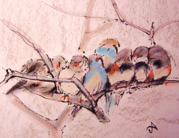Sleeping-Birds-soft-pastel-on-paper-art-by-ayse-juaneda