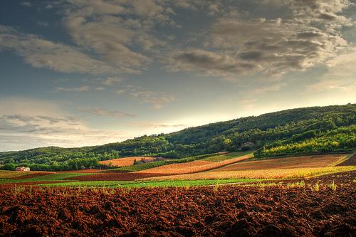Veneto Countryside Vincenza Italy