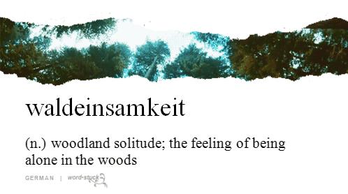 waldeinsamkeit-woodland-solitude-alone-woods-words