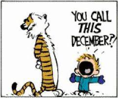 calvin-hobbes-you-call-this-christmas-33