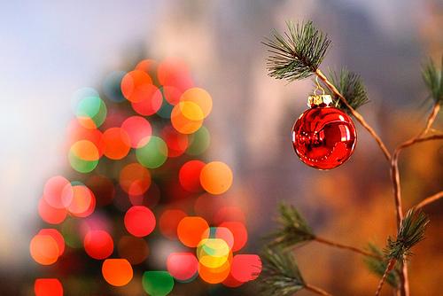 Merry Christmas, Christmas Tree, ornament