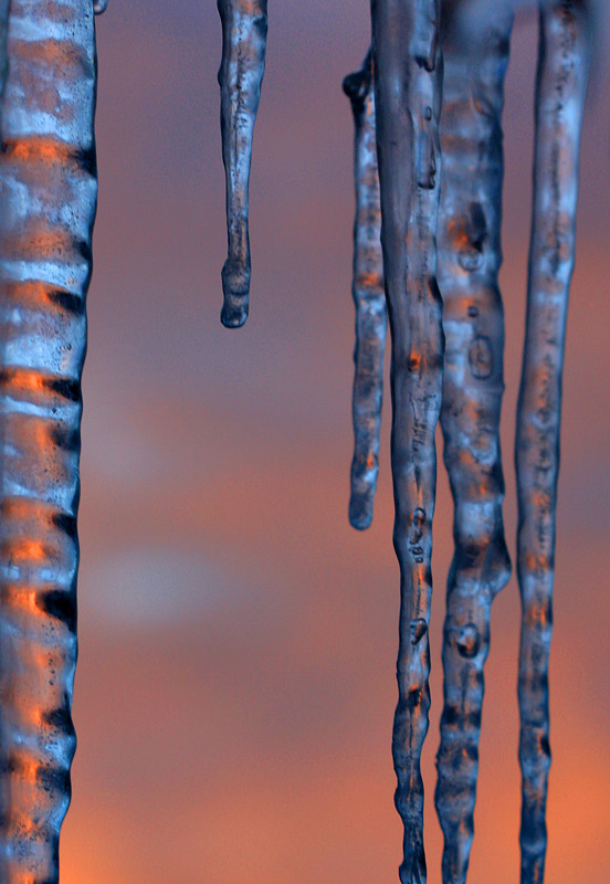 icicles,sun,sunset,sunrise,winter