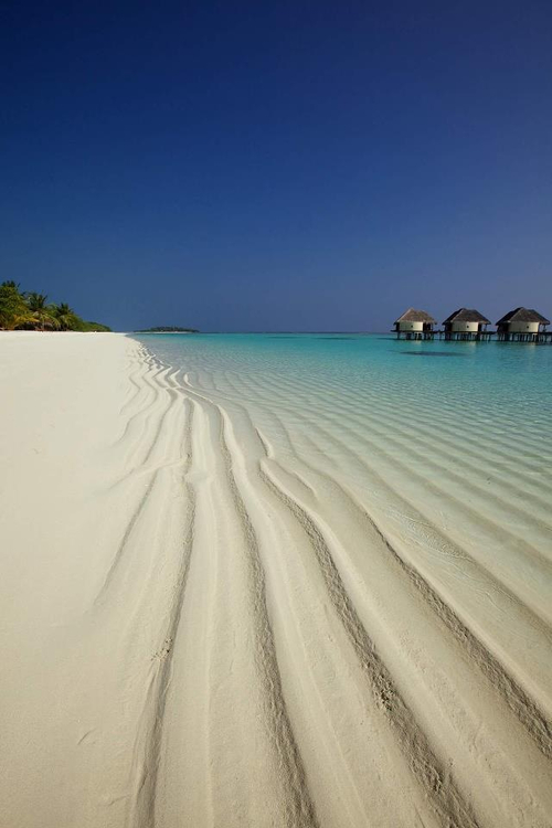 Maldives,beach,tropics,vacation,holiday,sun,photography, sand