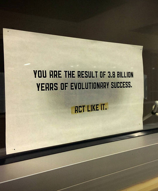 cool-paper-evolution-people-act-window-professor-funny