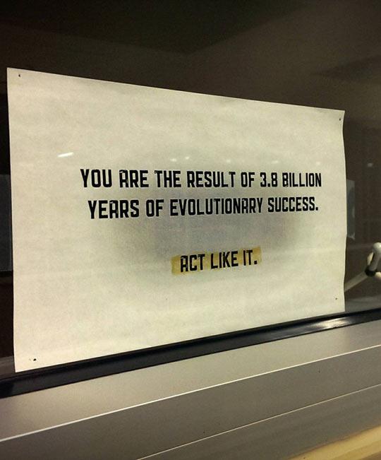 cool-paper-evolution-people-act-window-professor-funny