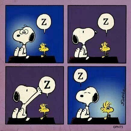 peanuts,cute,insomnia,snoopy,woodstock