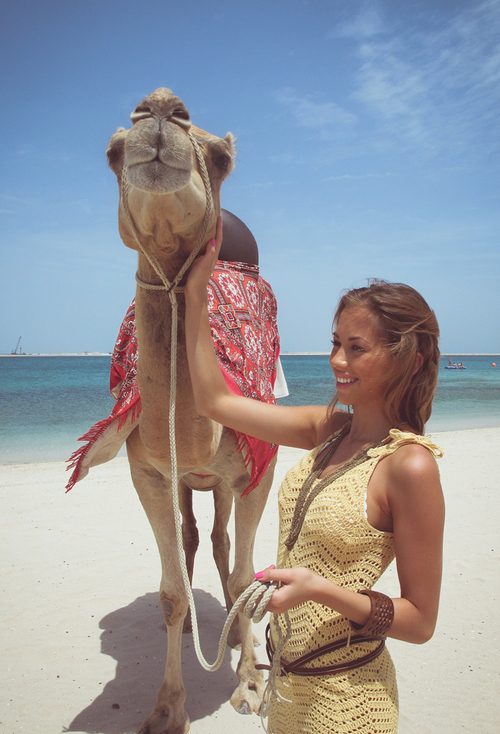 camel-beach-beauty