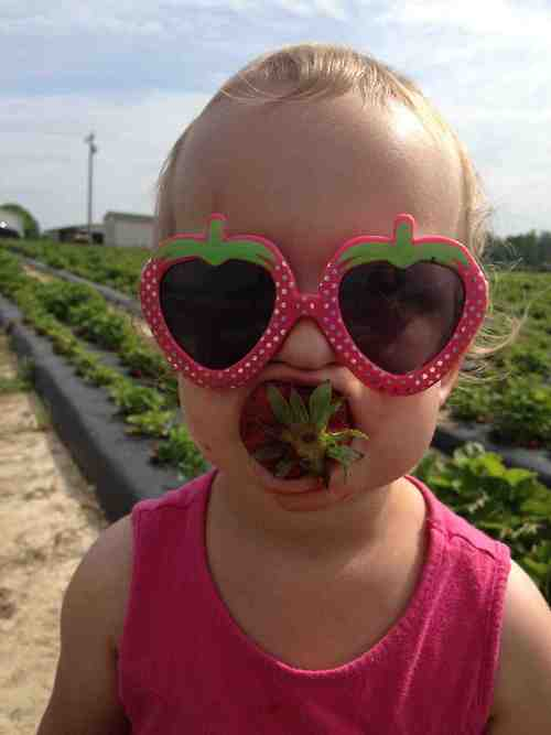 child-cute-strawberry-eat