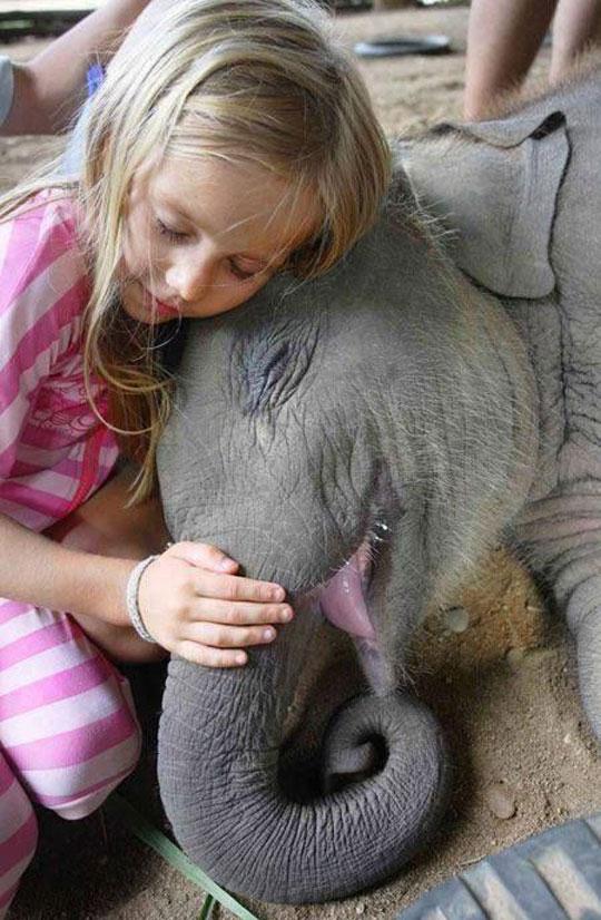 cute-girl-baby-elephant-hugging