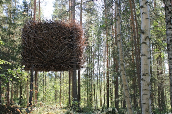 Tree hotel in Sweden