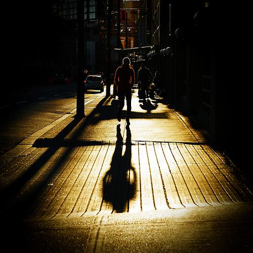 sun-morning-walk-light