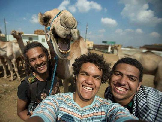 funny-camel-selfie-friends