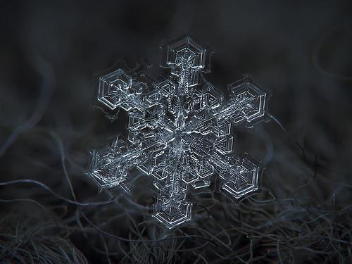 snowflake-cold