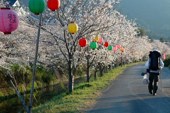 Shikoku-88-Temple-Pilgrimage-Japan