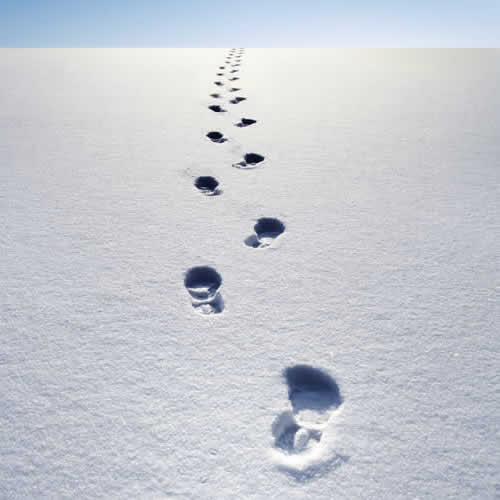 footprints-in-snow