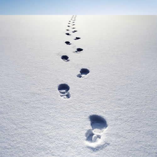 footprints-in-snow