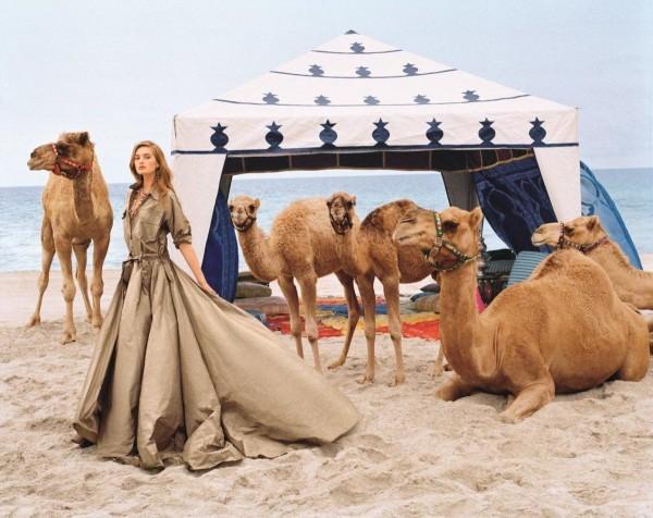 caleb-camel-hump-day-wednesday
