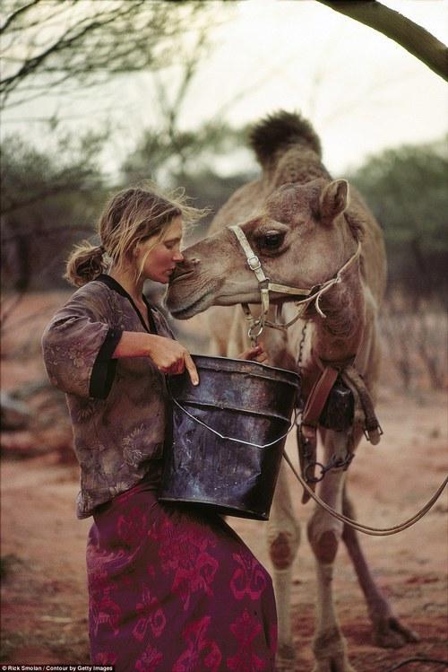 camel-kiss-caleb-hump-day-wednesday