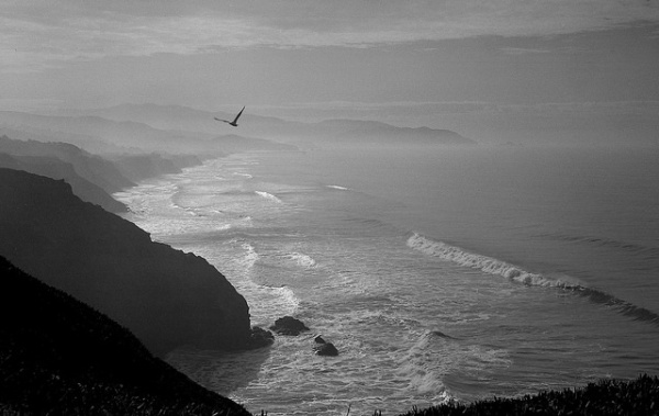 hazy-day-ocean-landscape-black-and-white