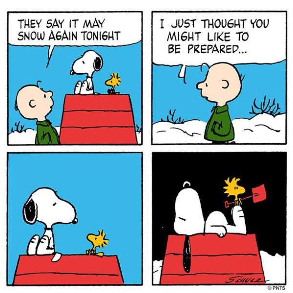 Snoopy – Live & Learn