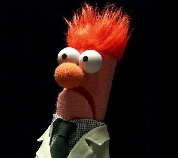 beeker-muppets-funny-TGIF-T.G.I.F.