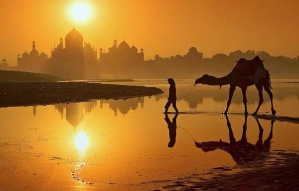 camel-sunrise-sunset-hump-day