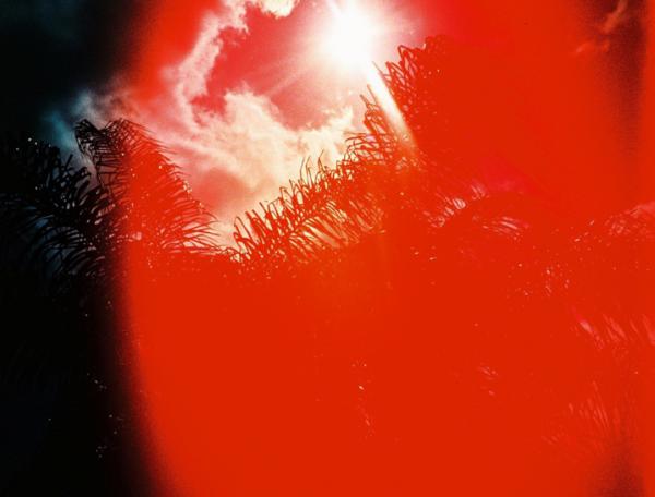heat-wave-sun