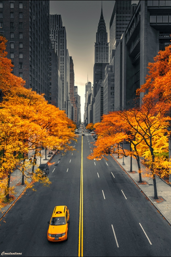 new-york-city-autum-fall