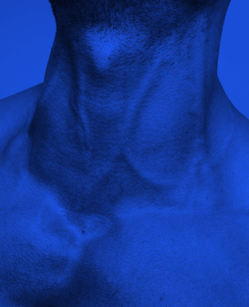 blue-neck-nape