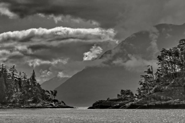 fog-vancouver-island