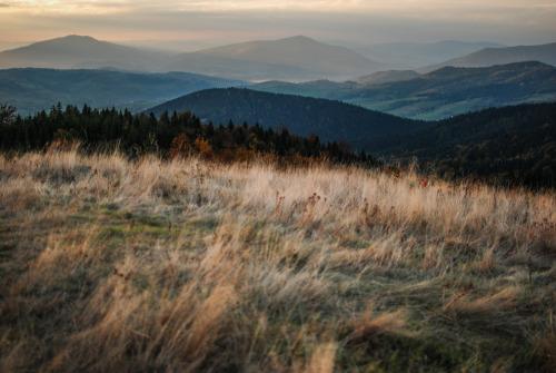 meadow-field-hills-mountains-sun-poland-island-beskids