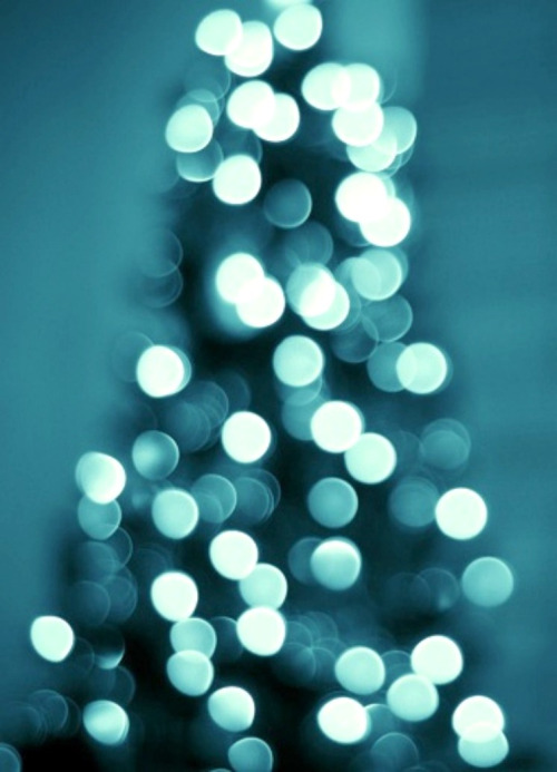 photography-tree-blue-lights