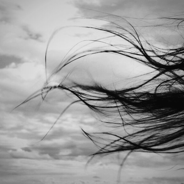 hair-breeze-wind