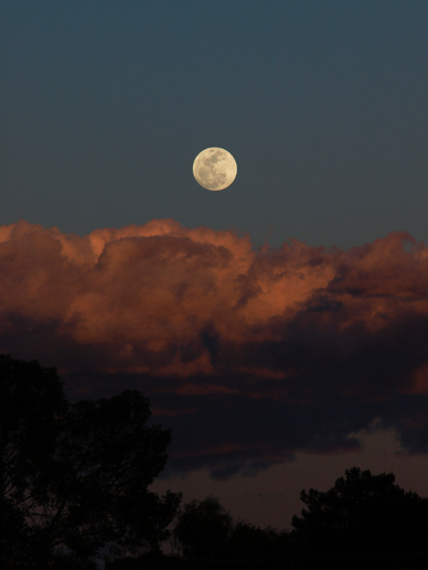 moon-full-moon
