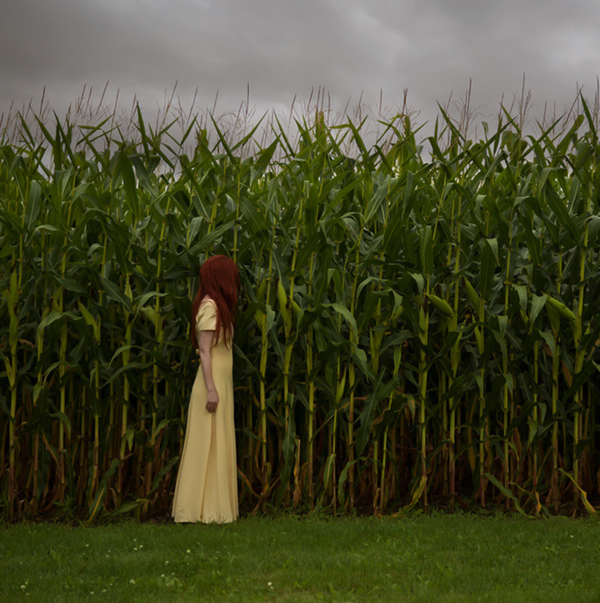 Patty-maher-corn-photography