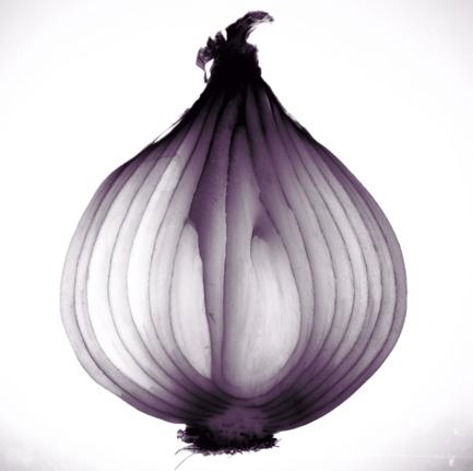 bermuda-onion