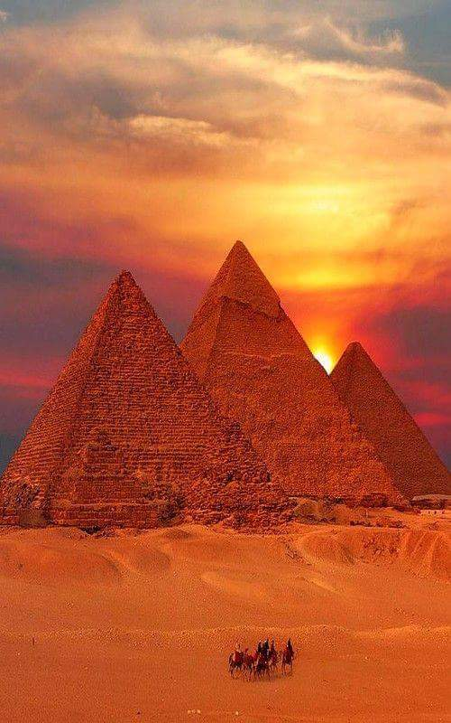 camel-wednesday-hump-day-pyramids