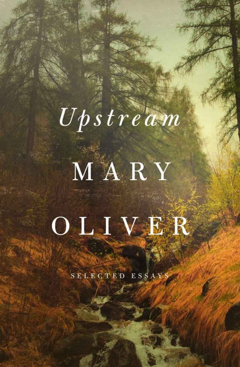 mary-oliver-upstream