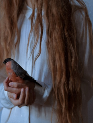 rainy-evenings-red-hair-bird-in-hand